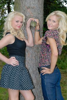 Two Pertty Blonde Females Stock Photography