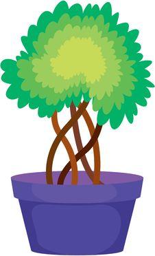 Free Plant Royalty Free Stock Photo - 17787015