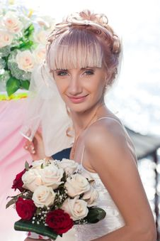 Free Happy Bride Stock Photography - 17788952