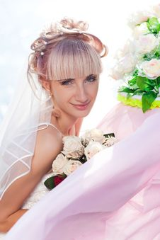 Free Happy Bride Stock Photo - 17788980