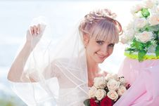 Free Pretty Bride Royalty Free Stock Photography - 17789037