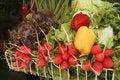 Free Grocery Basket Stock Photo - 17792170