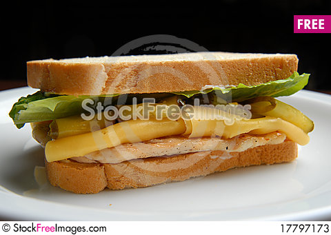 Free Sandwich Stock Photos - 17797173