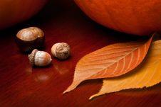 Free Autumn Still Life 2 Stock Images - 17790694