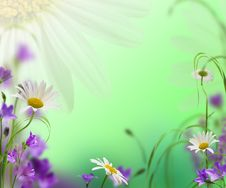 Free Flowers Royalty Free Stock Images - 17791199