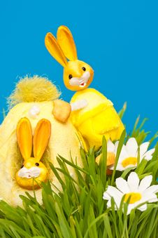 Free An Easter Rabbit Stock Photo - 17792310