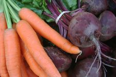 Free Carrots And Beets Stock Image - 17792391