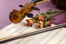 Free Violin, Sheet Music And Dried Roses Stock Images - 17792614