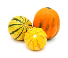 Free Mini Pumpkins Isolated Royalty Free Stock Photos - 17792808