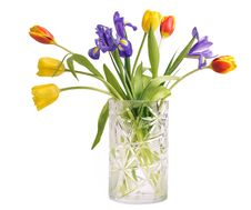 Free Bouquet Of Tulips And Irises Stock Image - 17794081