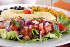 Free Close Up Salad And Burrito Meal Stock Photo - 17799660