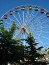 Free Ferris Wheel Through The Trees Stock Image - 1782841