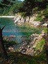 Free Korean Pine Seaside Island Stock Photo - 1787850