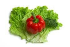 Free Vegetables Stock Image - 1782111