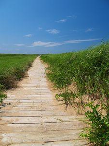 Free Wooden Path Stock Photo - 1783000