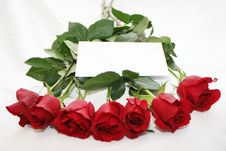 Free Red Roses With A White Note Royalty Free Stock Image - 1787256