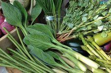 Free Mock Up Of Kale Stock Photo - 17801860