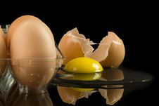 Free Cracked Organic Egg Stock Photo - 17802810