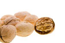 Free Walnuts Stock Photography - 17803632