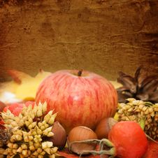 Free Autumn Leaves And Fruits. Vintage A Background Stock Image - 17806911