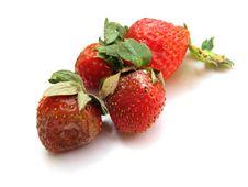Free Weathered Strawberries Royalty Free Stock Photo - 17807625