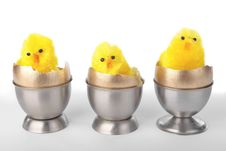 Free Easter Chicks On Egg Cups Over White Royalty Free Stock Photography - 17807857