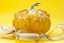 Free Pumpkin Stock Photos - 17807963