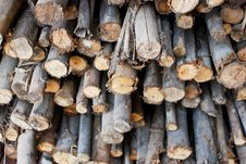 Free Pile Of Wood In Logs Storage Stock Images - 17808304