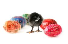 Free Easter Eggs And Baby Chicken Royalty Free Stock Photography - 17808407