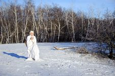 Free Woman In Winter Forest Royalty Free Stock Photo - 17809305