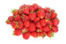 Free Fresh Red Strawberry Royalty Free Stock Photo - 17809425