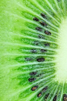 Free Close Up Kiwifruit Royalty Free Stock Image - 17809566