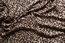 Free Close-up Of A Folds Of Stylish Leopard Scarf. Stock Image - 17810361
