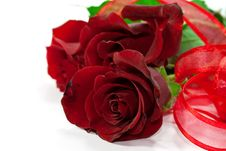 Free Red Roses With Ribbon Stock Images - 17811954