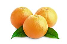 Free Oranges And Leafs Royalty Free Stock Photography - 17816957