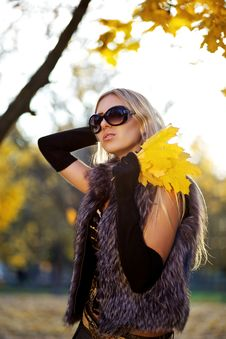 Free Beautiful Woman Portrait In Natural Autumn Stock Image - 17817331