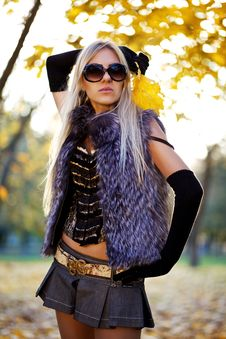 Free Beautiful Woman Portrait In Natural Autumn Stock Photos - 17817363