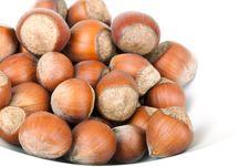 Free Small Group Hazelnut Stock Photo - 17818430