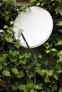 Free Antenna Stock Photos - 17828623