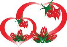 Free Valentine S Day Royalty Free Stock Photos - 17820998