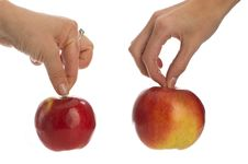 Free Two Apples In Hands Stock Images - 17821494