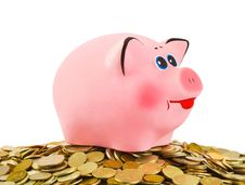 Free Piggy Bank And Heap Of Coins Stock Images - 17822074