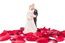 Free Bride And Groom With Rose Petals Royalty Free Stock Photography - 17823057
