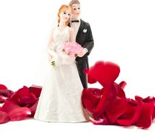Bride And Groom With Rose Petals Stock Images