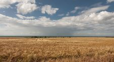 Free Thunderstorm At Nature Protection Area Riedensea Royalty Free Stock Photos - 17823618