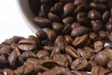 Free Coffee Beans Royalty Free Stock Photo - 17828705