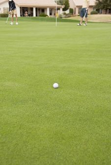 Free Golf Ball On The Green Royalty Free Stock Photos - 17828898