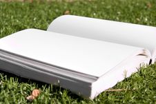Free Open Book With Blank Pages Stock Photography - 17828902