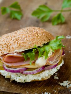 Free Sandwich Royalty Free Stock Photography - 17828957