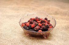 Free Mulberry Fruit Royalty Free Stock Photos - 17829778